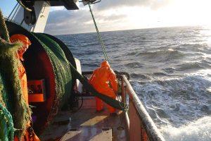 Hvem styrer fiskekvoterne