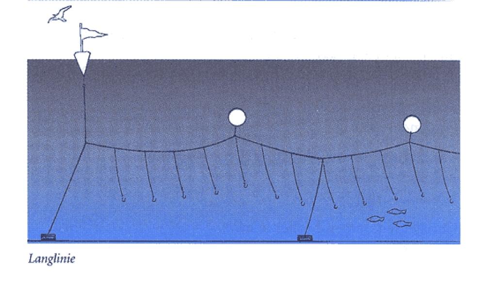 langliniefiskeri