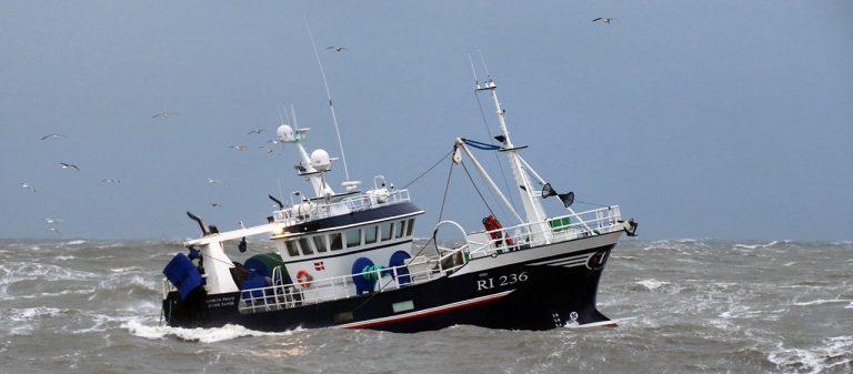 Bæredygtigt Fiskeri.DK - Fordi sandheden om dansk fiskeri skal frem!