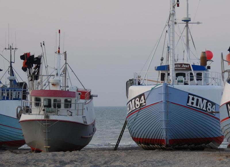 Thorupstrand fiskerne