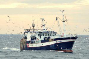 Universitets-undersøgelse værdsætter europæisk fiskeforvaltning