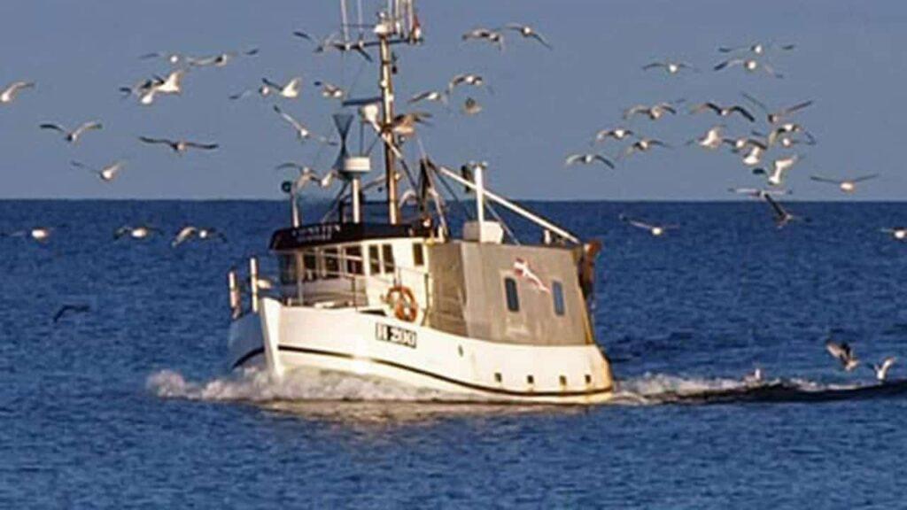 Million-kompensation til Østersø-fiskerne er blæst ud af proportion foto: CSH